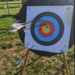 an archery target with a handful of arrows stuck in the face
